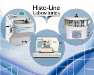 histo line 5 p