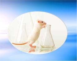 Bio-Medical Research